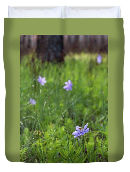 Bartram's Ixia And Bee #3 Duvet Cover