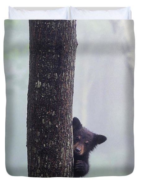 Bashful Bear Cub - Fs000230 Duvet Cover by Daniel Dempster