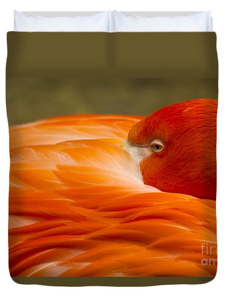 Bashful Flamingo Duvet Cover