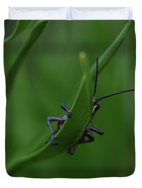 Duvet Cover featuring the photograph Bashful Grasshopper by Richard Rizzo
