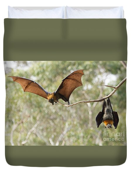 Bat Landing Duvet Cover