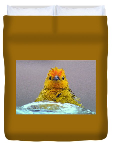 Duvet Cover featuring the photograph Bath Time Finch by Lori Seaman