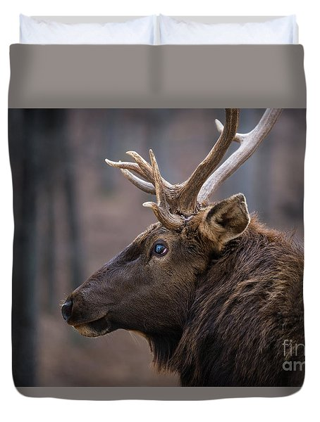 Duvet Cover featuring the photograph Battle Scar by Andrea Silies