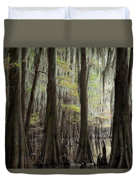 Bayou Trees Duvet Cover