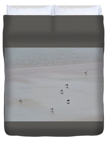 Beach Seagulls Duvet Cover by Kathy Long