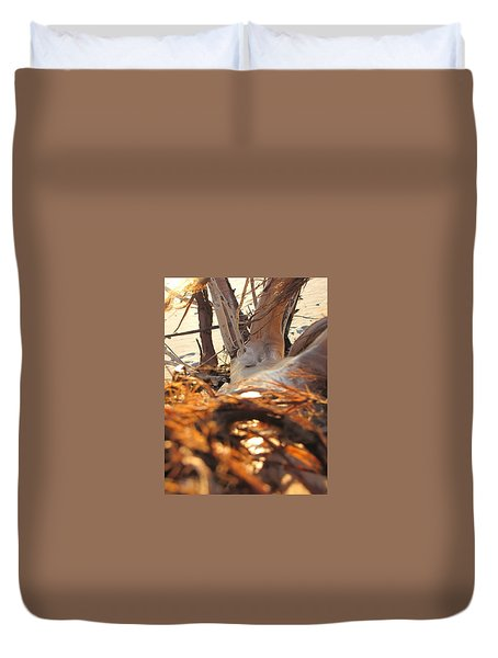 Beach Wood Duvet Cover