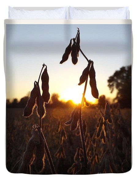 Beans At Sunset Duvet Cover by Erick Schmidt