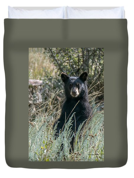 Duvet Cover featuring the photograph Bear Cub At Waterton Canyon by Stephen  Johnson