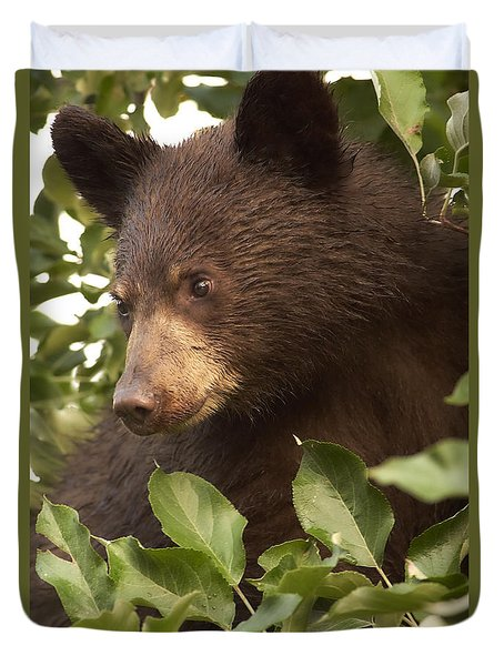 Bear Cub In Apple Tree1 Duvet Cover