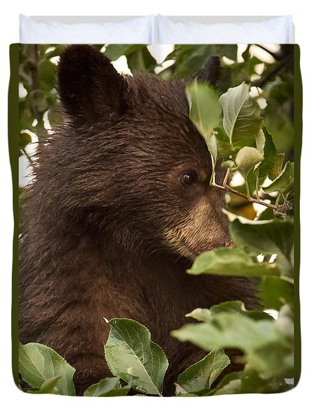 Bear Cub In Apple Tree3 Duvet Cover