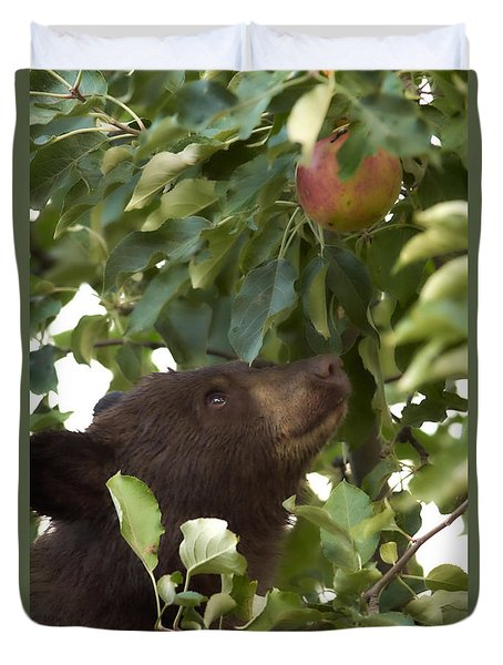 Bear Cub In Apple Tree4 Duvet Cover