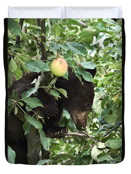 Bear Cub In Apple Tree5 Duvet Cover