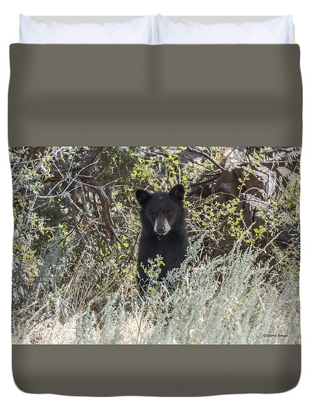 Bear Cub Looking For Mom Duvet Cover