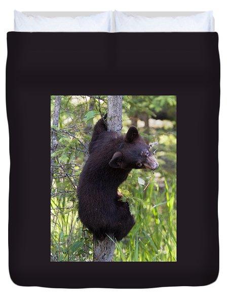 Bear Cub On Tree Duvet Cover