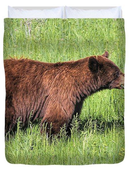 Bear Eating Daisies Duvet Cover