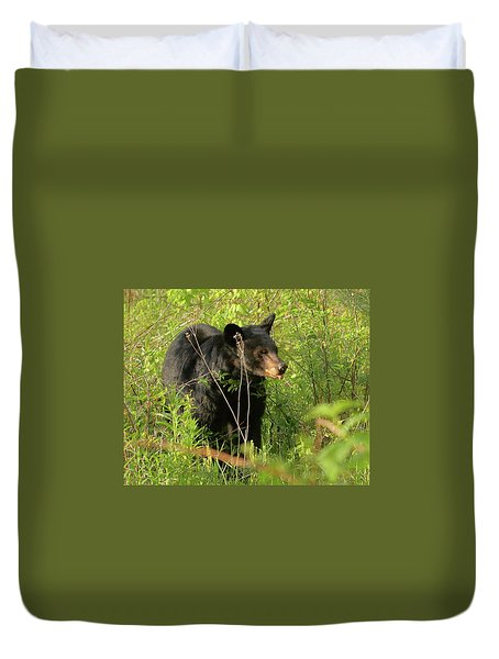 Bear In The Grass Duvet Cover by Coby Cooper