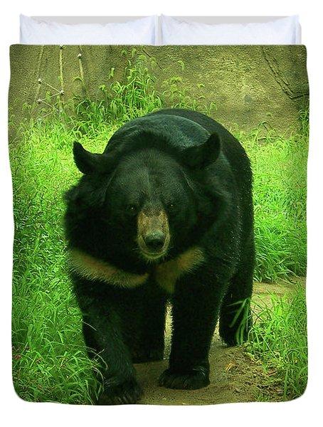 Bear On The Prowl Duvet Cover