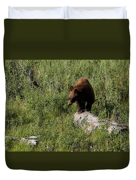Bear1 Duvet Cover