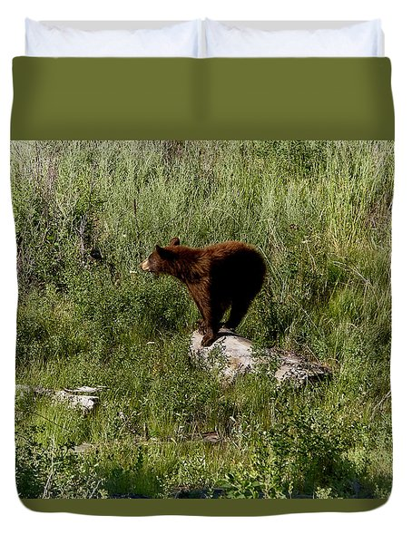Bear2 Duvet Cover
