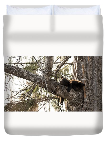 Bearly Hanging In There Duvet Cover