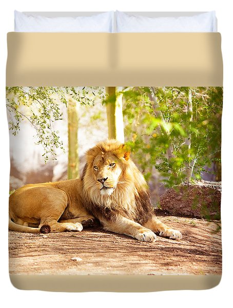 Beautiful African Lion Laying In Jungle Duvet Cover