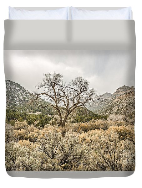 Beautiful Bare Tree Duvet Cover by Sue Smith
