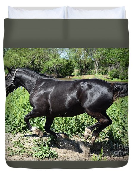 Duvet Cover featuring the photograph Beautiful Black Horse by Mark McReynolds