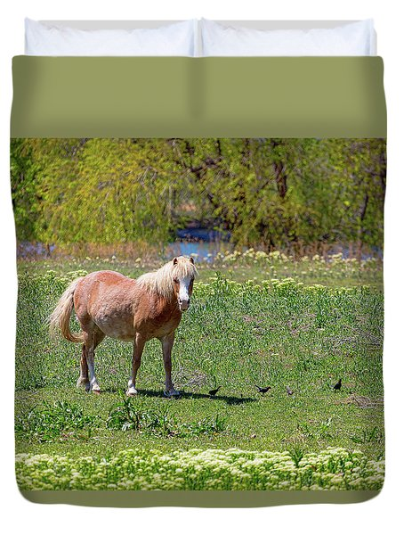 Beautiful Blond Horse And Four Little Birdies Duvet Cover by James BO Insogna