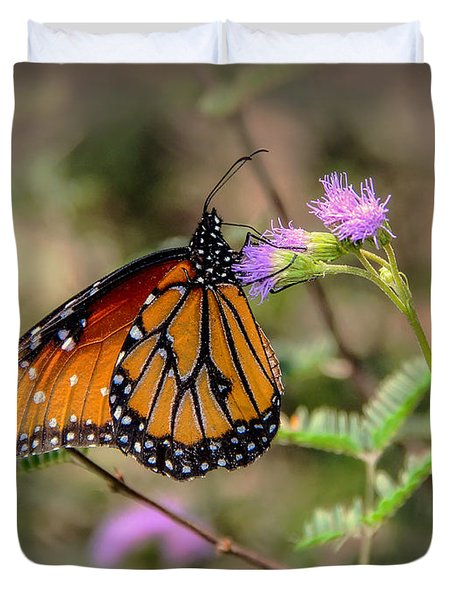 Beautiful Butterfly Duvet Cover by Elaine Malott