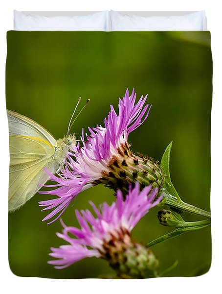 Beautiful Butterfly On Pink Thistle Duvet Cover