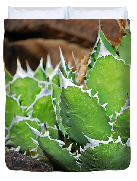 Beautiful Cactus Duvet Cover by Donna Greene