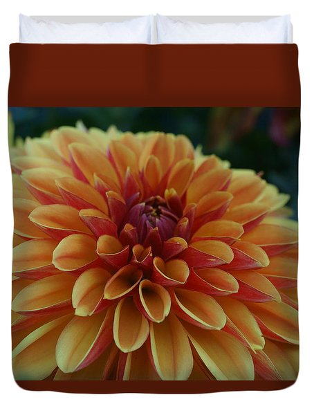 Beautiful Dahlia 1 Duvet Cover