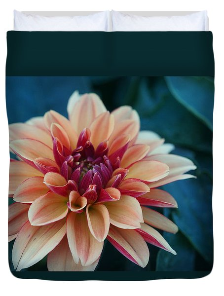 Beautiful Dahlia 4 Duvet Cover
