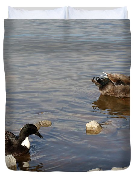 Beautiful Ducks Duvet Cover