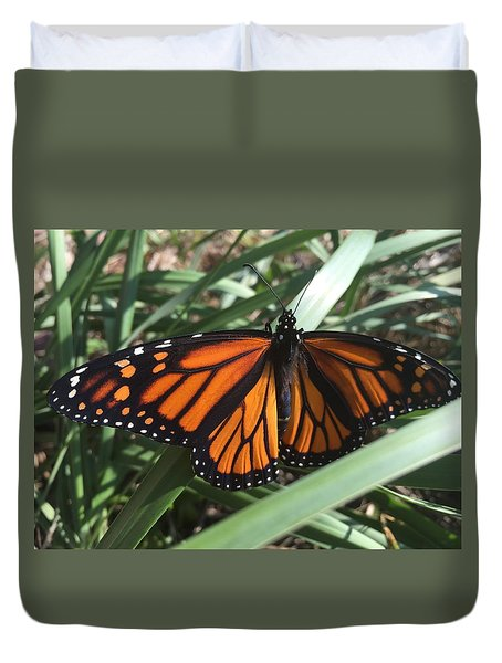 Beautiful Fall Butterfly  Duvet Cover