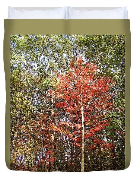 Duvet Cover featuring the photograph Beautiful Fall Colors  by Irina Sztukowski
