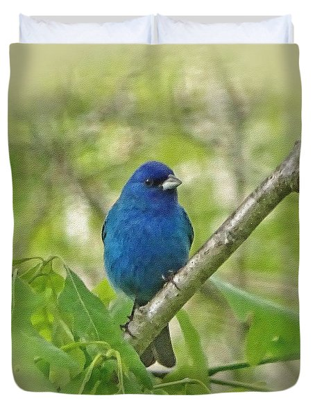 Beautiful Indigo Bunting Duvet Cover