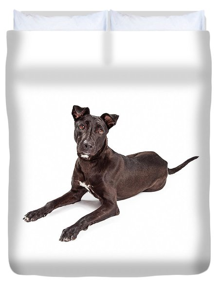 Beautiful Large Labrador Retriever Crossbreed Dog Duvet Cover