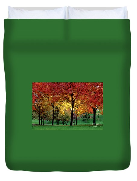 Beautiful Light At The Park In St. Louis In Autumn Duvet Cover