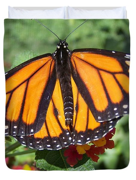Beautiful Monarch Butterfly Duvet Cover