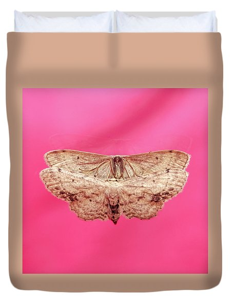 Beautiful Moth Wings Reflection Duvet Cover
