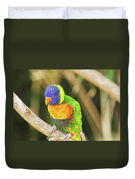 Beautiful Perched Mccaw On A Branch. Duvet Cover