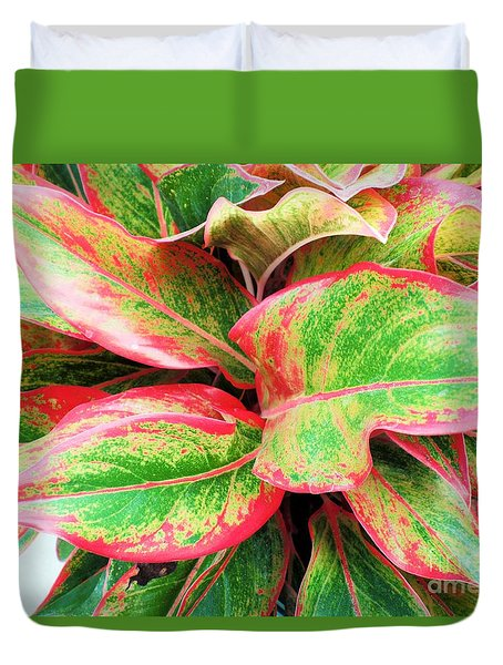 Duvet Cover featuring the photograph Beautiful Red Aglaonema by Ray Shrewsberry