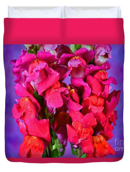 Beautiful Snapdragon Flowers Duvet Cover by Ray Shrewsberry