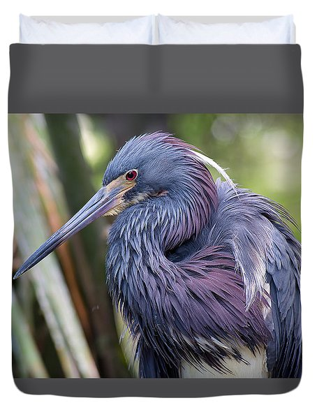 Beautiful Tricolored Heron Duvet Cover