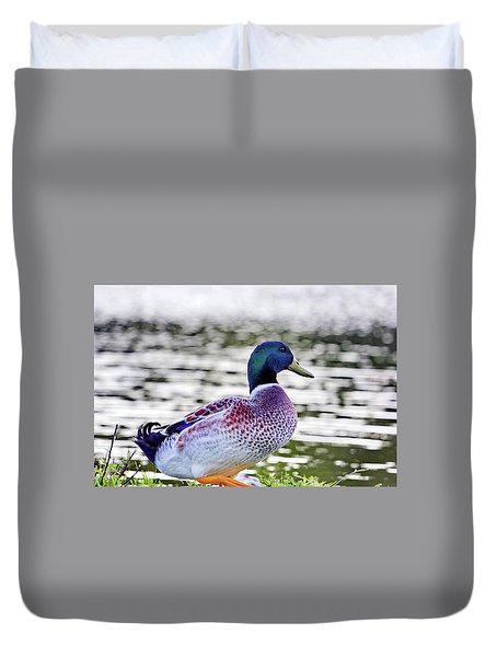 Beautiful Vibrant Mallard Duck Duvet Cover