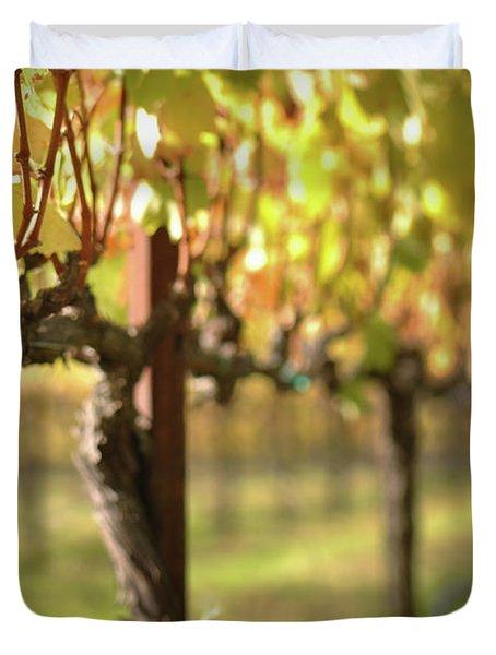 Beautiful Vineyard In Napa Valley Duvet Cover