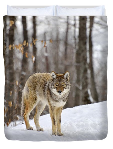 Beauty Of The Woods Duvet Cover