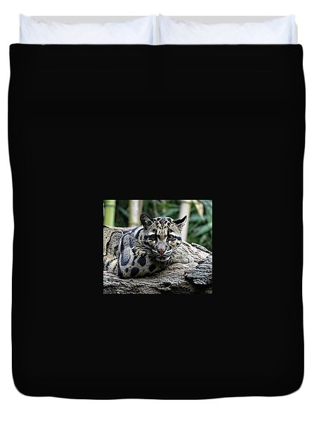 Clouded Leopard Beauty Duvet Cover