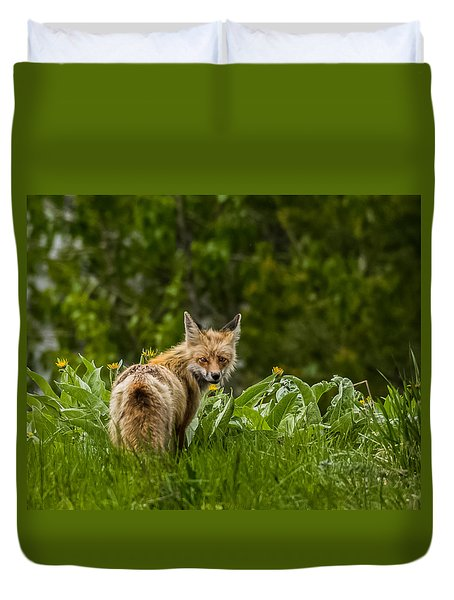 Duvet Cover featuring the photograph Beaver Creek Mama Fox In Spring by Yeates Photography